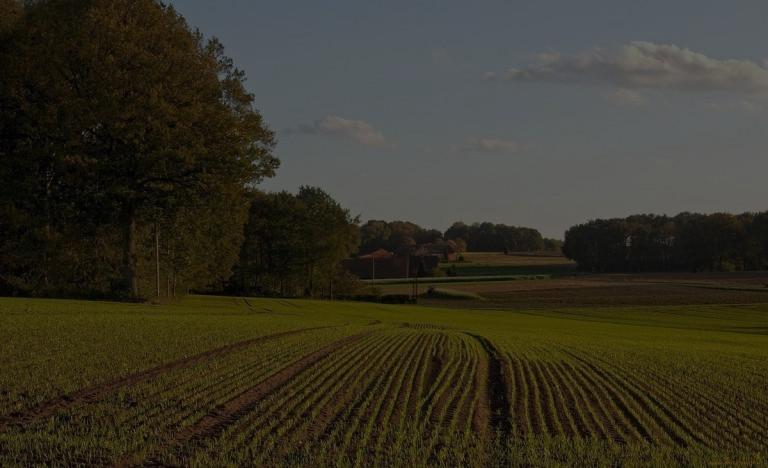 Земельна реформа врахує інтереси всіх сторін, – Кабмін