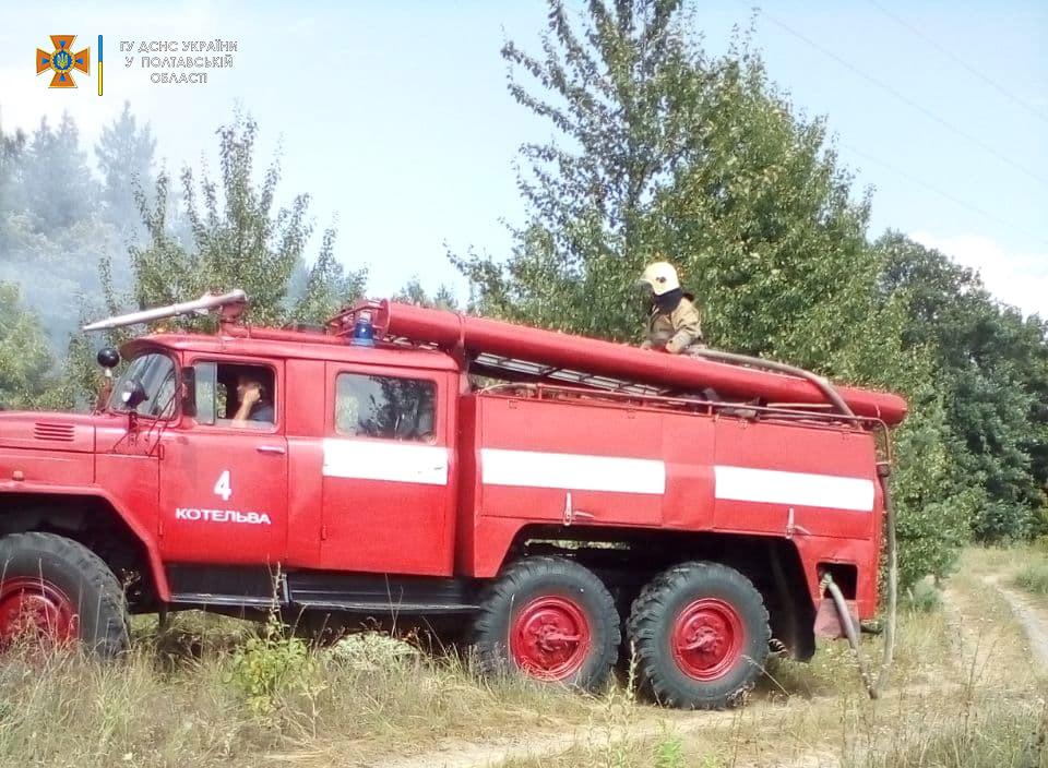 Пожежа у Котелевській громаді: ледь не згоріло 30 га лісу